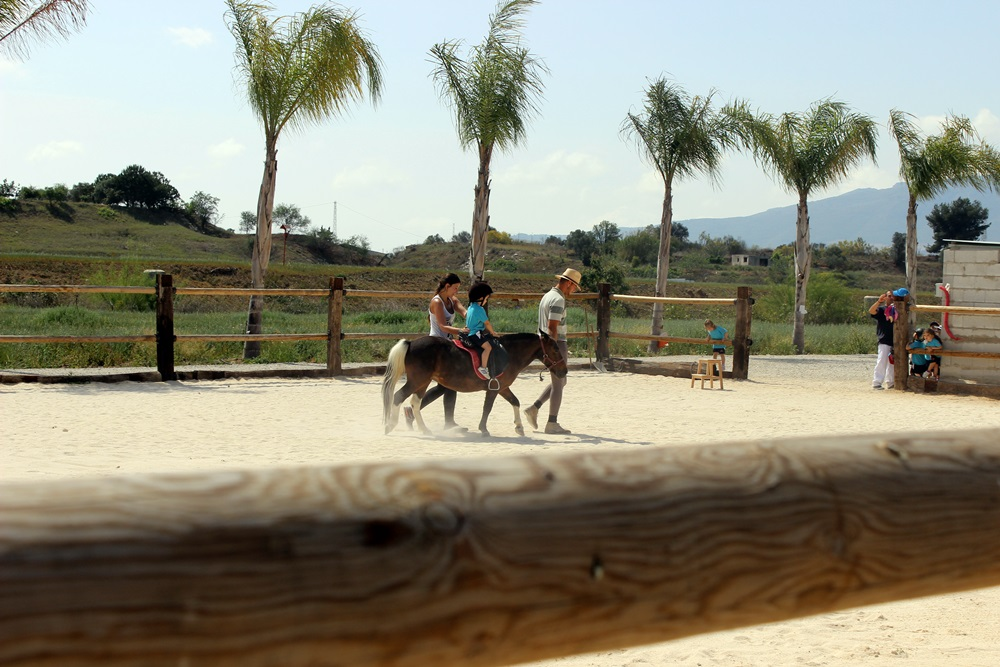 Paseo_pony_granja_escuela