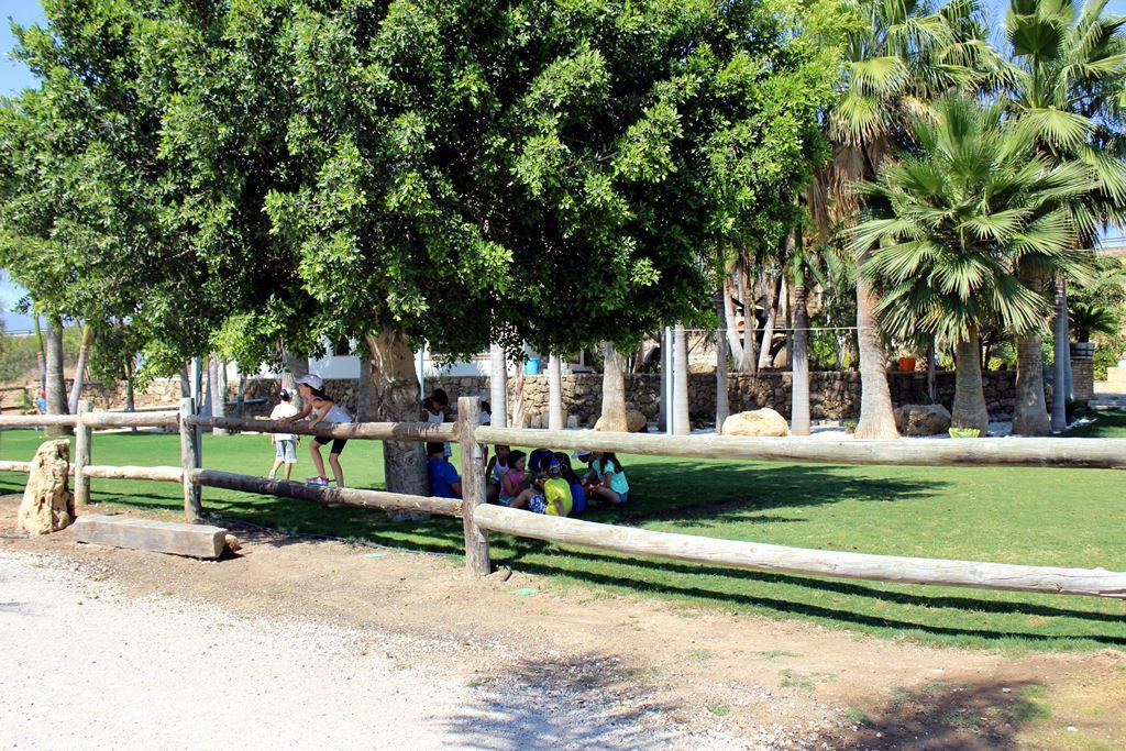 Campamento_de_verano_1