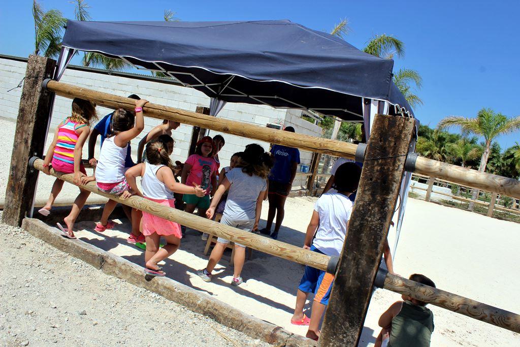 Campamento_de_verano_11