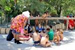 Campamento_de_verano_22