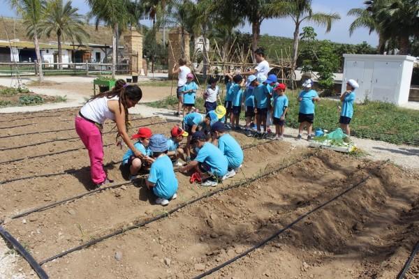 taller huerto granja escuela