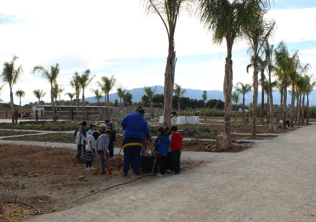 granja escuela malaga - herramientas huerto