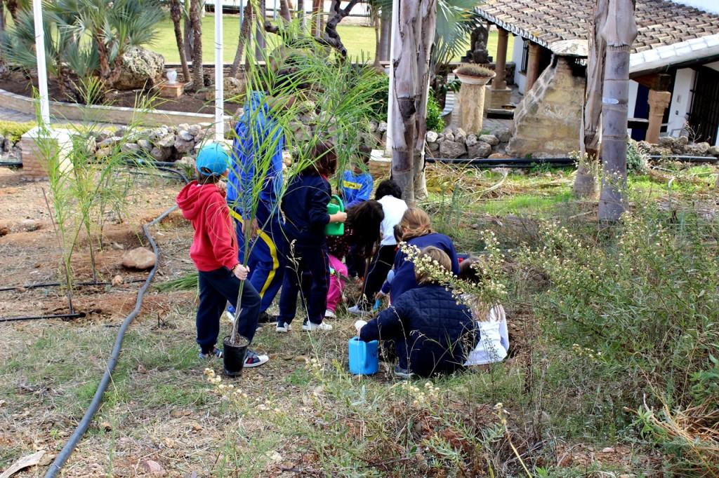 granja escuela malaga - palmeras