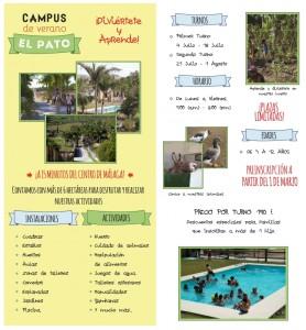 campus de verano 2014